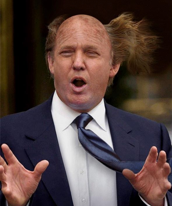 donald-trump-bald-350